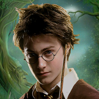 Harry Potter theme for Nokia N8